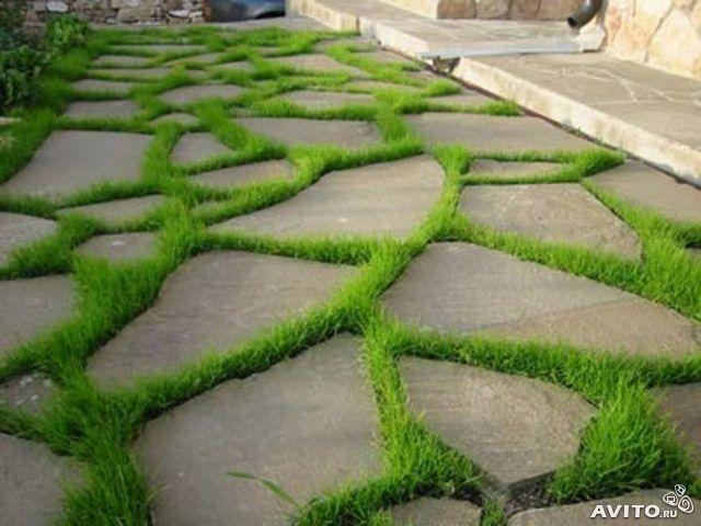 комплекс новый чем вывести траву с дорожек вас